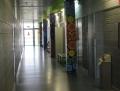 Institut El Foix
