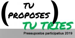 pressupostos participatius 2019